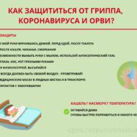 270256-446217737-446217820
